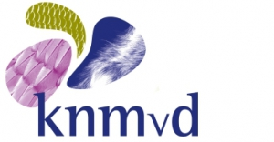 KNMvD logo low